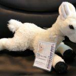BOM Wonder Llama Toy